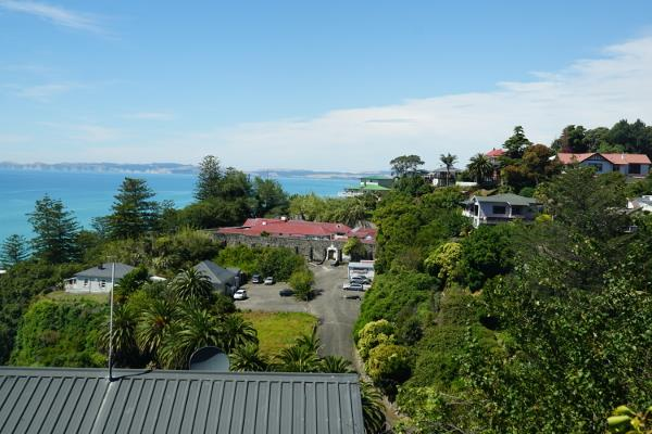 Beautiful picture of seaside houses in Napier city